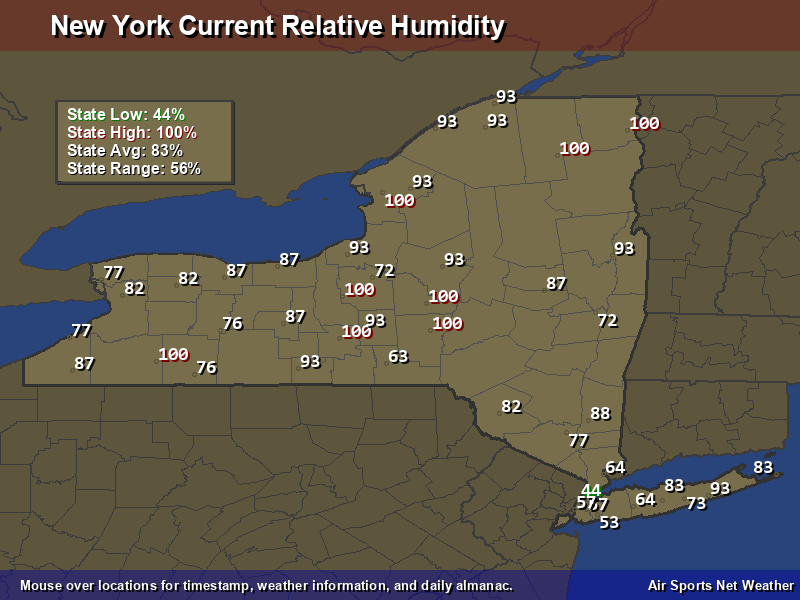 New York Relative Humidity Map