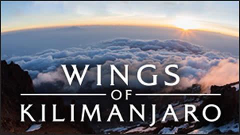 Wings of Kilimanjaro