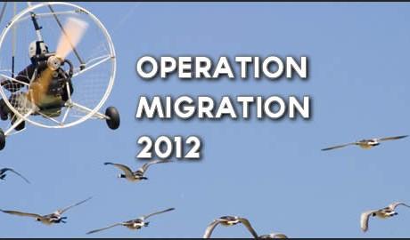Operation Migration 2012